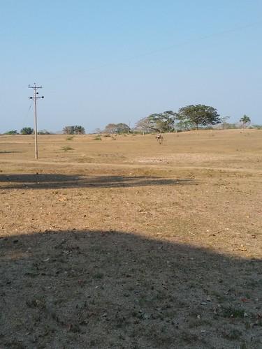 guamal magdalena colombia