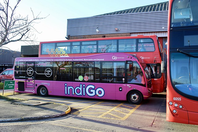 Go North East indiGo 688 / NK66 CXD