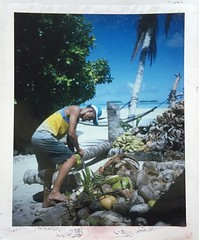18/3/19 - Funafala Island, Tuvalu. Polaroids taken with a LandCamera350 in 2019, its 50th year of life