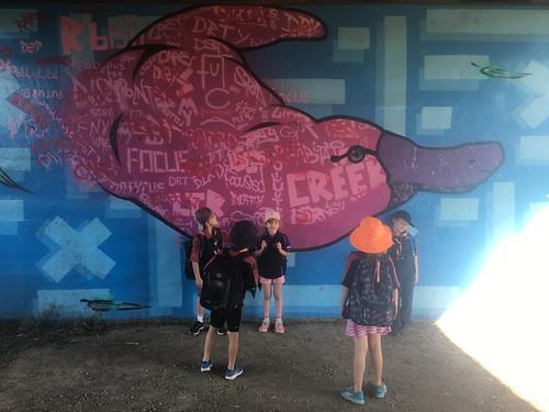 Platypus walk along the Diamond Creek | by eltham_mob
