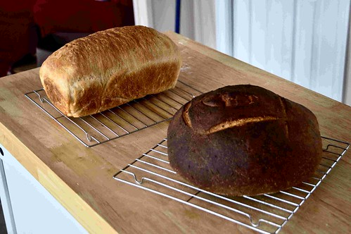 Caraway Rye and Regular Bread