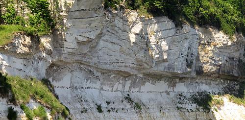The chalk cliffs, aka 'Fish Clay' at Stevns Klint in Denmark