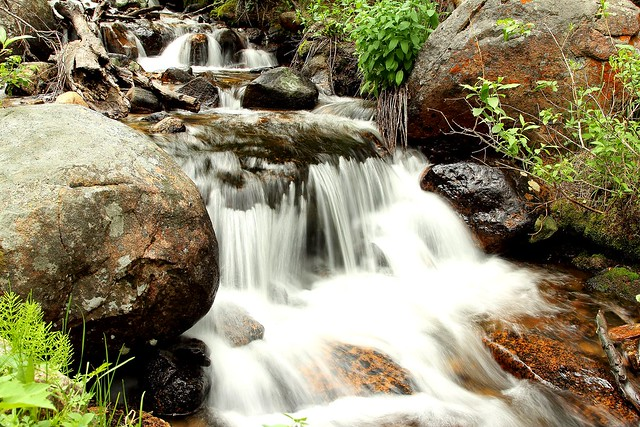 Stream in Rocky Mountain National Park
