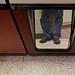 Reflected Headless Self-Portrait
