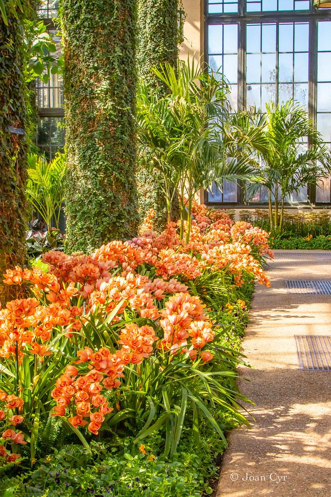 Longwood Gardens Kennett Square Pennsylvania Longwood Ga Flickr