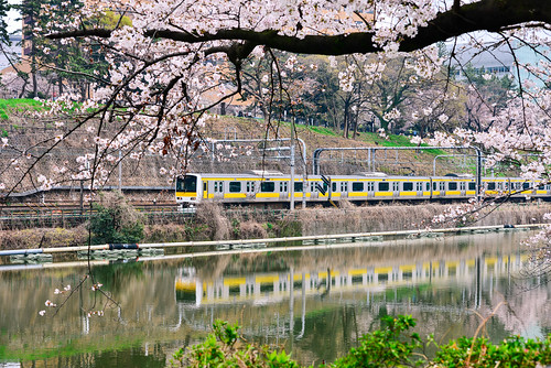 japan tokyo train railway spring cherry sakura flower outdoors iidabashistation idabashieki 飯田橋駅 いいだばしえき reflection 日本 東京 飯前橋 外濠公園 春天 櫻花 倒映 電車 火車 捷運 中央線 東武線