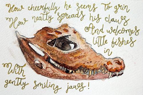 Cuvier's caiman skull
