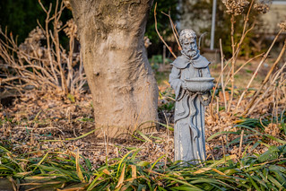 Saint Francis Keeping Watch on this Garden | by John Brighenti