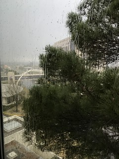 Thunderstorm hitting. The view from my hospital room this morning. | by Terry's Tina