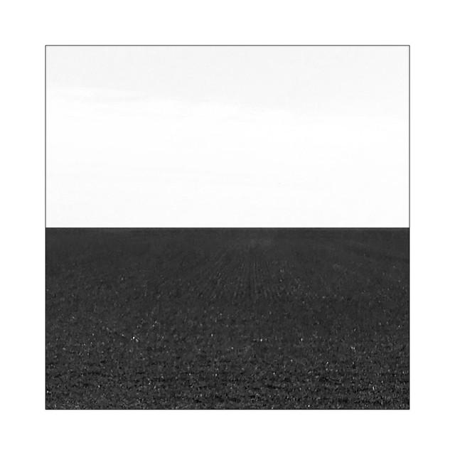 A Dutch landscape in black and white
