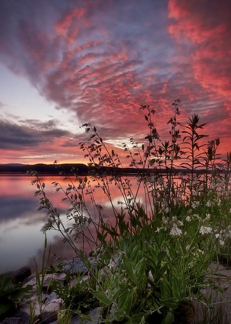 Lever du jour sur le Saguenay en juillet