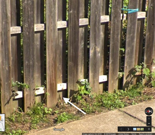 wooden fence with three pursewebs attached to a slat