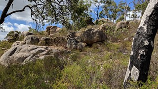Granite outcrops in John Forrest NP | by moorlandwalker