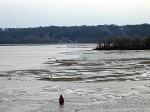 farmcreek illinoisriver rivers creeks peoria il illinois confluence birds shallowwater