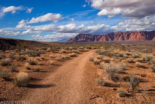 Ansazi Ridge Trail | by IntrepidXJ