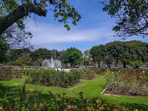 Exposition Park Rose Garden | by RuggyBearLA
