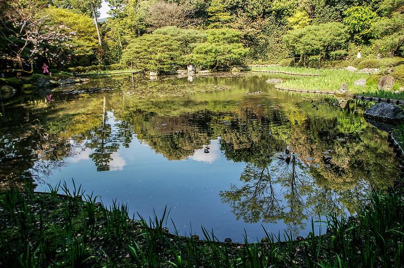 平安神宮賞櫻 (11)