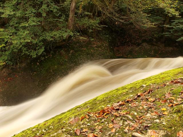 Kleiner Fluss im Allgäu