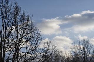 Soft Sky | by Modkuse