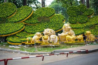 Lunar New Year Decorations in Ho Chi Minh City, Vietnam | by wuestenigel