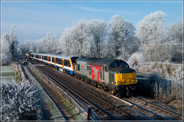 Frosty at Frisby