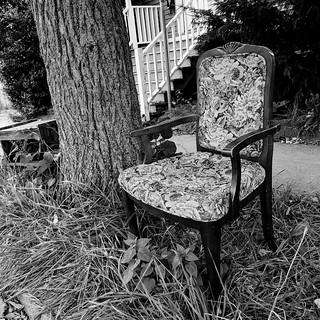 sidewalk seating (johnson street) | by jspad