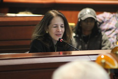 CT State Rep. Gail Lavielle (R-Wilton, Norwalk, Westport) speaking during the Intellectual/Developmental Disabilities Caucus Family Hearing Day in Hartford.