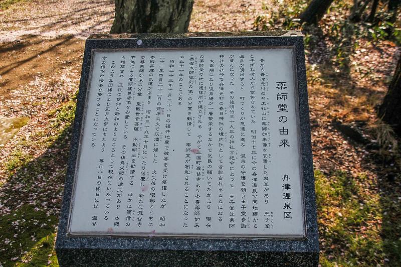 舟津公園(舟津温泉薬師堂)之櫻 (11)