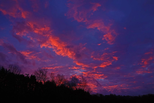 sunrise cullompton leat fields devon sun rise blue orange red trees silhouette ipm