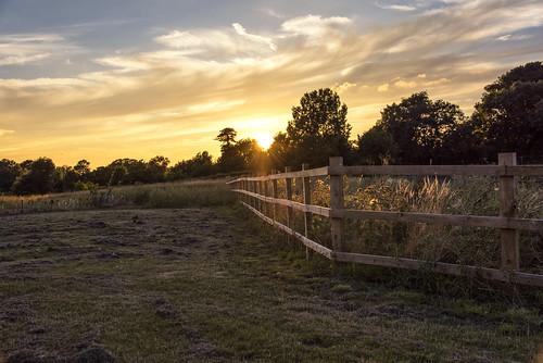 fence sunset sun uk england britain autumn tree landscape outdoor papworth field grass sky dusk yellow clouds nature light sunrays