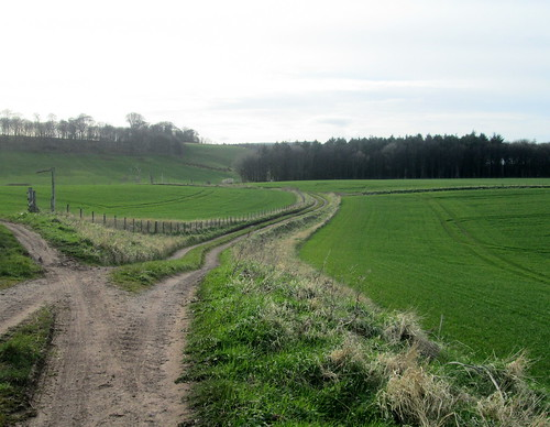 Farmland, Cockburnspath, Scottish Borders | by piningforthewest