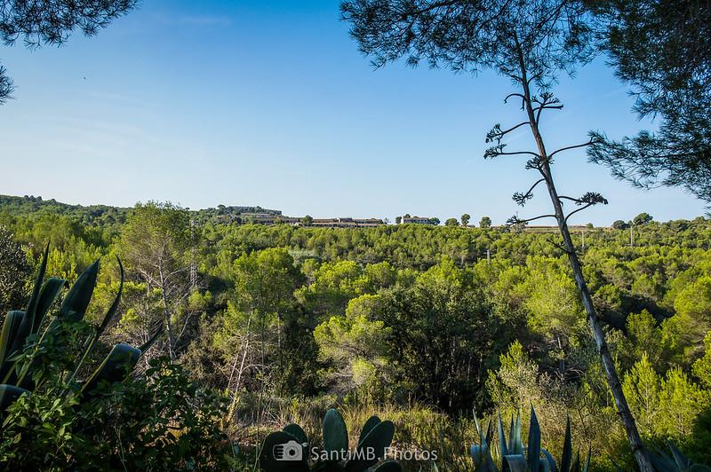 Granjas abandonadas de La Plana en Viladellops