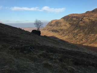 Deer on the descent to Loch an Nid | by malky_c