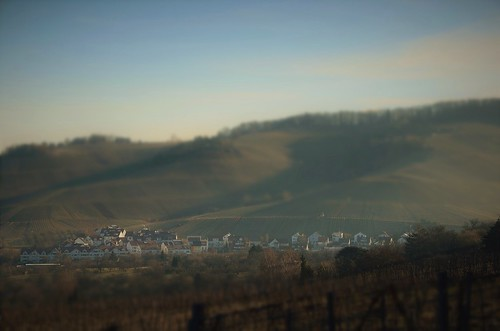 landscape view vineyards hill outdoors morning mood light sunlight sunshine colors details bokeh tiltshift village rural travel visit explore discover beutelsbach stetten kernen remstal remsmurrkreis badenwürttemberg germany europe photography hobby wanderlust sunrise