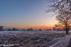 zonsopkomst winter terhorst