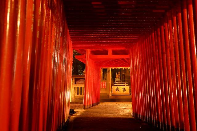 Seto Inari shrine after rain