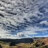 Pipiwharauroa walk #turbines #teuku #trailrunning