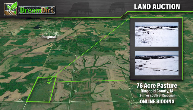 DreamDirt | Pasture Ringgold County, Iowa Auction