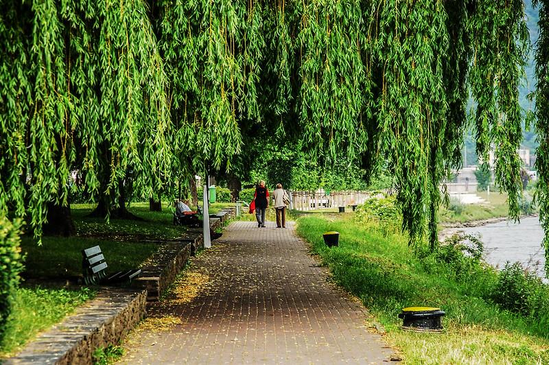 萊茵河畔佈道(St. Goar)