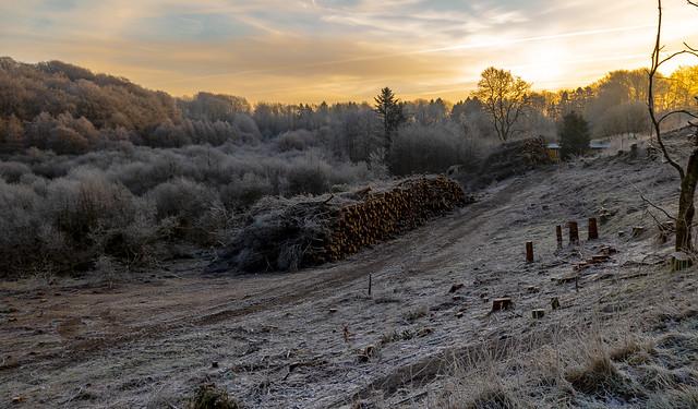Morning in Denmark at wintertime