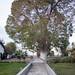 Hacienda Rontoy - 5753