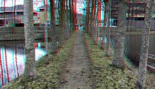 Pollard-willows Island X-ing 3D