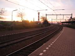 Amsterdam2010 015