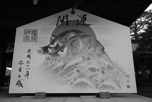 02-04-2019 Kashihara, Nara pref (6)