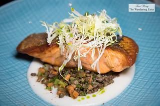 Roasted salmon, beluga lentils, cauliflower puree, lemon olive oil | by thewanderingeater