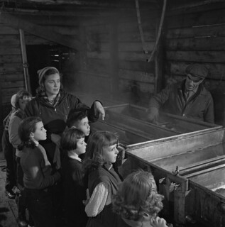 Schoolchildren at a sugar house watch as maple sap is boiled and refined in vats, Québec / Écoliers à la cabane à sucre, observant comment l'eau d'érable est bouillie et filtrée dans des cuves (Québec)