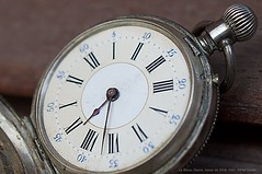 20160131 Rellotge de butxaca macro La Geleva Osona