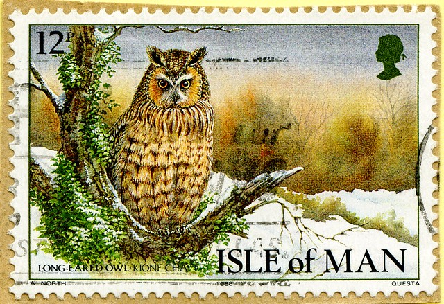 great stamp Isle of Man 12p Long-eared owl (Asio otus, Waldohreule, Hibou moyen-duc, gufo comune, 长耳鸮, erdei fülesbagoly)