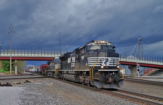 NS 1135