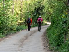 Ruta Circular Barrancas de Santalla